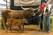 Tibina-20181029.jpg - Tibina by Tibbs - Owned by Larry and Heatherly Smith.